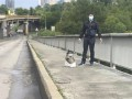Геращенко рассказал, в чем обвинят минера моста Метро в Киеве