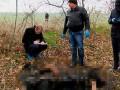 Ритуальное убийство под Одессой может быть инсценировкой