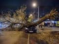 Шторм в Одессе: в центре города дерево рухнуло на автомобиль