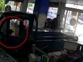 В Китае собака на грузовике разгромила магазин