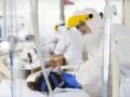Во Франции восемь человек умерли после прививки вакциной от AstraZeneca