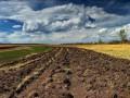 Министр агрополитики предлагает разрешить фермерам перепродавать права на аренду земли
