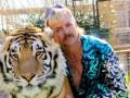34 млн зрителей: Король Тигров стал одним из популярнейших сериалов на NETFLIX