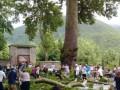 Названа причина падения на туристов ветки 500-летнего дерева в Азербайджане