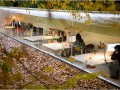 Офис в лесу: испанские архитекторы работают на природе