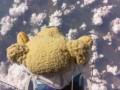 Плюшевый медведь побил рекорд знаменитого парашютиста Феликса Баумгартнера