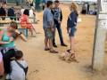 В Запорожье строят городок для беженцев с Донбасса