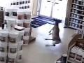 В США олень ворвался в магазин