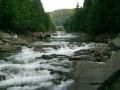 Госводагентство назвало самые чистые реки Украины
