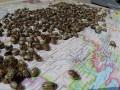 Российские товары в Полтаве хотят маркировать
