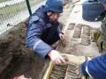 Возле школы на Запорожье нашли почти сотню гранат