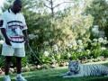 Домашний тигр Майка Тайсона откусил женщине руку