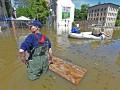 День в фото: Европа под водой, флирт с лосем и Аршавин с любовницей