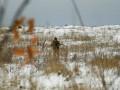 На Новый год военные на Донбассе не пострадали