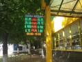 Гривна продолжает укрепляться: Курс валют на 25 июня