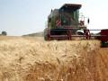 Украина значительно нарастила экспорт зерна за последние 10 лет