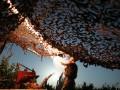 Попытка прорыва под Красногоровкой: в штабе озвучили потери боевиков
