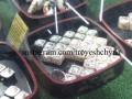 В киевском супермаркете засняли, как мышь ест суши