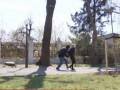 В Виннице маньяк нападает на женщин с иглой