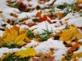 Погода на выходные: в Украине пройдут дожди и выпадет снег