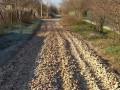 В Одесской области дорогу отремонтировали рапанами