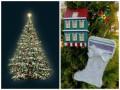 В Киеве определились, какой будет новогодняя елка (фото)