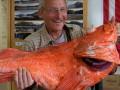 На Аляске поймали 200-летнего морского окуня