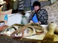 Поймал рыбу – плати 48 тысяч: Какие штрафы грозят браконьерам в Украине