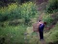 В Госдуме предложили заселять китайцами заброшенные российские деревни