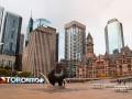 В Торонто введут карантин из-за вспышки COVID-19