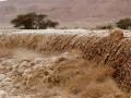 Наводнение в Израиле: восемь детей в критическом состоянии