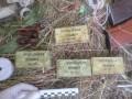 В Одесской области нашли сумку с боеприпасами и взрывчаткой