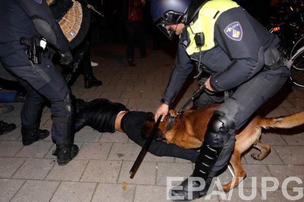 Против турков также использовали собак