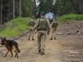 Украина не фиксировала перестрелку на границе: готовится встреча с РФ