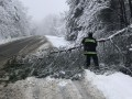 В Закарпатской области из-за непогоды обесточены 40 населенных пунктов