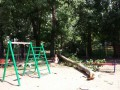 В Одессе на две детские площадки рухнули деревья