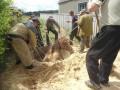 В Житомирской области спасатели доставали коня из колодца