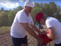 Лукашенко отдал половину личного урожая картошки ОМОНу