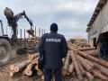 На Волыни массовые обыски из-за незаконной рубки леса