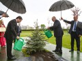Лей не жалей: как президент Беларуси елку в дождь поливал