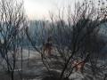На Донбассе четыре нарушения за сутки
