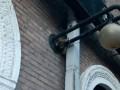 В центре Киева на фонаре обнаружили 2-метрового питона