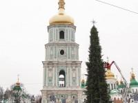 Главная елка столицы: Сколько стоит новогоднее дерево на Софийской площади в Киеве