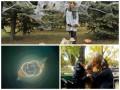 Неделя в фото: Чубакка в Одессе, мопсы в Киеве и Кошачий Глаз в космосе
