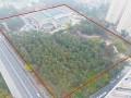 Депутаты Киевсовета от ЕС блокируют создание парка в угоду застройщику