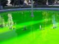 """В Киеве """"позеленела"""" вода в реке и фонтане"""