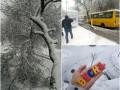 Снежный апокалипсис: в Днепре замело трассы и аэропорт, а в Харькове закрыли школы