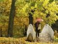 Синоптики обещают холодную, но сухую погоду до 2 октября