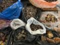 На Житомирщине блокировали нелегальный сбыт янтаря за границу
