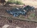 В Киеве скоростной поезд Интерсити сбил насмерть пьяного мужчину